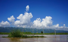 Landscape of Inle Lake in Shan, Myanmar (phuong.sg@gmail.com) Tags: asia asian background beautiful beauty burma calm clean clouds cold color colorful cool dramatic fresh horizon image inlay inle island lake landscape light mirror myanmar natural nature outdoor panorama panoramic peaceful range reflection relaxation scene scenic shanstate silence sky smooth summer sun sunlight sunrise sunset tranquil water