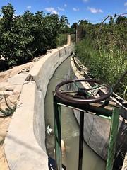 IMG_0384 (ukdtbarker) Tags: formentera del segura alicante pool costa blanca