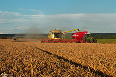 Wheat Harvest 2017 | CLAAS // FENDT // HORSCH (martin_king.photo) Tags: wheatharvest 2017harvestseason 2017 wheat harvest highlands region clouds cloudyday harvesttime harvest2017 claaslexion770apshybrid claaslexion780apshybrid claasvario1050header claasvario1050 claas claaslexion combineharvester fendt1050vario horschtitan34uw summerwork tschechischerepublik powerfull martin king photo machines strong agricultural greatday great czechrepublic welovefarming agriculturalmachinery farm workday working modernagriculture landwirtschaft martinkingphoto moisson machine machinery werfendtfährtführt