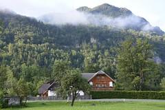sDSC_3408 (L.Karnas) Tags: slowenien slovenia slovenija sommer summer juli july 2017 gozd martuljek kranjska gora