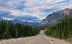 On Icefields Parkway, Jasper - Canada (André-DD) Tags: cans2s canada kanada urlaub vacation alberta herbst fall autumn outdoor clouds mountain landscape hill mountainside jaspernationalpark parkway sonne sun nationalpark bäume baum tree trees serene mountains berge berg wolken wolke cloud natur nature icefields sky jasper forest strase road street icefieldsparkway
