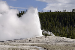Old Faithful (rschnaible) Tags: yellowstone national park us usa west western wyoming outdoor sightseeing tour tourist landscape hot spring geyser old faithful