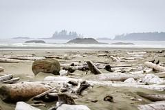 The wild Pacific shore (Jessie T*) Tags: combersbeach pacificrimnationalpark vancouverislandbc canada pacificocean sandybeach driftwood headland