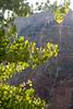 IMG_6512 (sniggerfardimungus) Tags: desolation canyon river trip silk webs