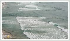 C'est encore loin les bonnes vagues ? Tais-toi et avance ! / Is it still far for the good waves? Shut up and forward - Côte des Basques / Basques coast - Biarritz (christian_lemale) Tags: côte coast basque mer sea surf biarritz france nikon d7100