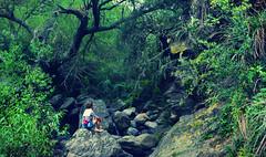 UN RINCON ESCONDIDO EN LA MONTAÑA (Marina Balasini & Juan Montiel) Tags: naturaleza bosque verde green travel turismo nature forest rio river argentina viajes