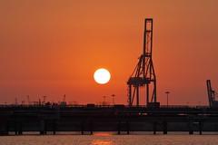 Sunrise Crane (Manolo Calabuig) Tags: cielo rojo alba amanecer crane sunrise dawn red