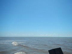 #61stpier #fishing #pierlife #galveston #TX #Texas #LoveGalveston #dock #pier #shark #redfish (the61stpier) Tags: pier fishing galveston texas tx dock 61stpier