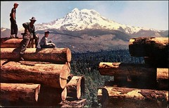 """""""Northwest Harvest"""" Train load of logs near Mt. Rainier. Photo by Lee Merrill. Postcard P-1933. Published by Smith Scenic Views, (ca. 1960's) (lhboudreau) Tags: postcard postcards colorphoto outdoor outdoors vintagepostcard valley landscape bluesky mountain mountains rainier mountrainier mtrainier log logs logging train loadoflogs trainloadoflogs people snowcapped forest trees tree northwestharvest northwest leemerrill smithscenicviews p1933 postcardp1933 1960 1960s washington washingtonstate stateofwashington americannorthwest vintagepostcards wood wooden boys harvestingtrees treeharvest harvest"""