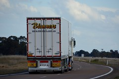 Blenners (quarterdeck888) Tags: trucks transport semi class8 overtheroad lorry heavyhaulage cartage haulage bigrig jerilderietrucks jerilderietruckphotos nikon d7100 frosty flickr quarterdeck quarterdeckphotos roadtransport highwaytrucks australiantransport australiantrucks aussietrucks heavyvehicle express expressfreight logistics freightmanagement outbacktrucks truckies