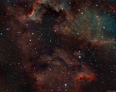 Pelican Nebula and Cygnus Wall region in Narrowband (Martin_Heigan) Tags: pelicannebula ic5070 cygnuswall northamericanebula ngc7000 caldwell20 astronomy astrophotography amateurastronomy martin heigan telescope imagingrefractor astrograph wostar71 f49 williamoptics qhyccd qhy163m cooledcmos coldmos phdguiding optolongfilters fits pixelmath narrowband sho widefield dso hst mhastrophoto astrometrydotnet:id=nova2205689