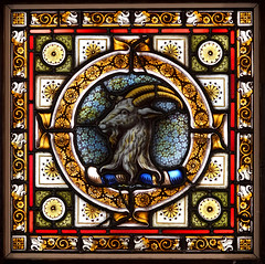The Goat (SteveJM2009) Tags: stainedglass salisbury cathedral refectory goat elephant light colour square uk july 2017 stevemaskell explored