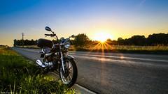 Gold Hour - my Moto (YᗩSᗰIᘉᗴ HᗴᘉS +6 500 000 thx❀) Tags: sunset gold goldhour goldenhour moto yamahaybr125cm³ road nature hensyasmine route hss