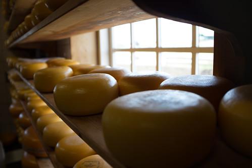 Cheese ©  Still ePsiLoN