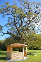 "Gazebo and Old Oak Tree • <a style=""font-size:0.8em;"" href=""http://www.flickr.com/photos/61957374@N08/36116286396/"" target=""_blank"">View on Flickr</a>"