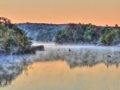 Dawn on the Backwater (clarkcg photography) Tags: river creek dawn fog crane heron flight light early orange spaniardcreek arkansasriver joined mouth navigationsystem connected worldwidetravel seariverpuddle tuesdaycrazytheme 7dwf