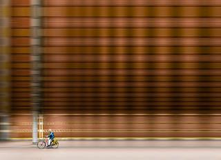 Bike Ride - Amsterdam
