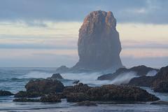 Cannon Beach sea stack (Thankful!) Tags: beach morning sunrise peaceful rock seastack cannonbeach oregon seagull