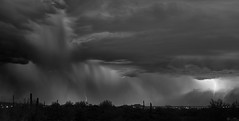 bEAUTY oF nATURE'S fURY (wNG555) Tags: 2015 arizona apachejunction phoenix apachetrail monsoon lightning storm duststorm haboob desert clouds bw toufivestarmc28mmf28 fav25 fav50 fav100