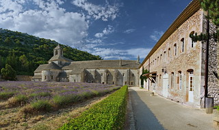 L'Abbaye de Sénanque. Vaucluse.