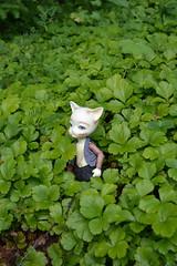 garden (17) (chibi.kagu) Tags: bjd piposdoll baha pi anthro