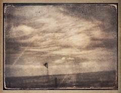 Traveling through Nebraska #tintype #photocopier #formulas #retro #americana #texture #textures #nebraska #windmill (harrysonpics) Tags: tintype photocopier formulas retro americana texture textures nebraska windmill