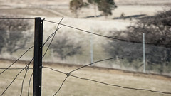 Loose Wires (Theen ...) Tags: broken country fencepost fencing hill hobart loose metal post rust theen torn wire zoodoo