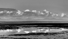 Tidal Pool Reflection (gerry.bates) Tags: nature beach ionabeach shore vanvcouver bc canada canon seascape water ocean bw