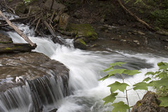 IMG_0195 (zamo86) Tags: nature decew falls niagara st catharines ontario waterfall