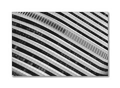 the wave (Karl-Heinz Bitter) Tags: architektur architecture groningen monochrom monochrome wave windows fenster linien curves abstract fineart karlheinz bitter welle blackwhite nederland niederlande holland