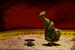 Knitted circus elephant takes final bow (jopperbok) Tags: jopperbok wah werehere hereios circus elephant animal knitting toy toys small little sand arena figurine tabletop red green yellow balance