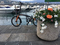 Harbour Santa Margherita Ligure (kim.barrett723) Tags: santa margherita ligure sml harbour italy