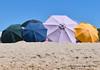 Al riparo dal vento  #Explora# (Gianni Armano) Tags: al riparo dal vento spiaggia sardegna 2017 ombrelloni foto gianni armano photo flickr