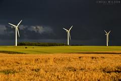 wind power (Neal J.Wilson) Tags: energy windmill wind power windpower turbines windturbines renewable green denmark jutland jylland wheat fields corn stormclouds sky