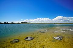 LAKE-THETIS-5