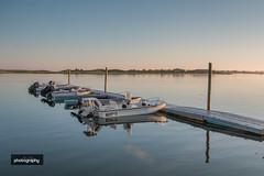 _MG_6814-2 (Alex Chilli) Tags: massachusetts usa america cape cod landscape