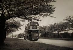 London transport RT802 on route 152, early 1960's. (Ledlon89) Tags: rtbuses aecregent lt lte londontransport london bus bsues londonbus londonbuses vintagebuses