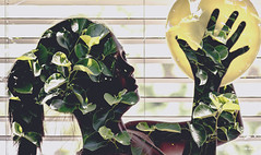 Double Exposure (Photo Alan) Tags: doubleexposure people sketch kids canada indoor