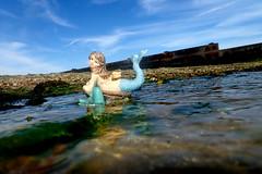 mermaid 10 (Mark Rigler UK) Tags: mermaid sea water beach fish dolphin seaweed blue sky outside poole dorset england model scale figure outdoors summer ocean