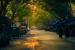 Let the dusk feast your eyes (Claronut Clicks) Tags: dusk streetphotography street cityscape citylights evening eveningsky trees travelphotography travel goldenhour goldenlight india karnataka bangalore southindia nikon iamnikon road
