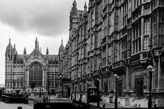 parlement b&w (Rudy Pilarski) Tags: nb bw parlement londres london architecture line ligne structure nikon tamron d7100 2470 travel voyage city urbain