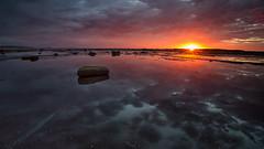 Long Reef Sunrise 5 (RoosterMan64) Tags: australia landscape longexposure longreef nsw northernbeaches rockshelf seascape sunrise