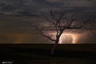 Thunderstorm Over Dumas_27A0085