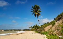 Praia de Tabatinga (Cláudio Maranhão) Tags: conde tabatinga paraíba jacumã