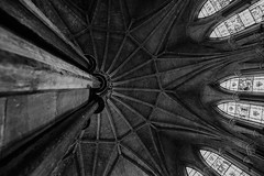 looking up (paul hitchmough new) Tags: lincoincathedral paulhitchmoughphotography nikond800 blackandwhite bw monochrome vault ceiling architecture