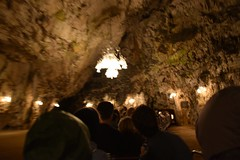 sDSC_4380 (L.Karnas) Tags: slowenien slovenia slovenija sommer summer juli july 2017 postojna cave postojnska jama grotte di postumia höhlen von pivka river inner carniola notranjska littoral train