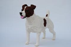 Dog (Felix Jaensch) Tags: dog lego sculpture animal mammal pet jack russel