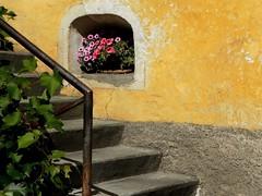 Glorenza (Ellipa) Tags: glorenza dettagli finestre colori scale