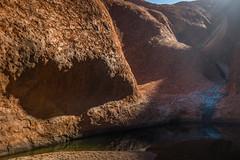 Uluru - Mutitjulu Waterhole-8