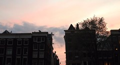 Vers les canaux (xflasch) Tags: dam amsterdam dama iamsterdam hollande paysbas hollandais néerlandais strangers tourist étranger touristes voyage travel trip weekend place piazza touristique sunset sunlight sunsky sky bird pink orange coucher soleil coucherdesoleil ciel oiseau cloud clouds nuage nuages bluesky orangesky pinksky bleuciel canon canoneos canoneos600d eos amateur photography photographie laurannepiersonphotographie landscape land scape paysage cloudporn de toit house maison home sweet tree passage canaux water landcape panorama